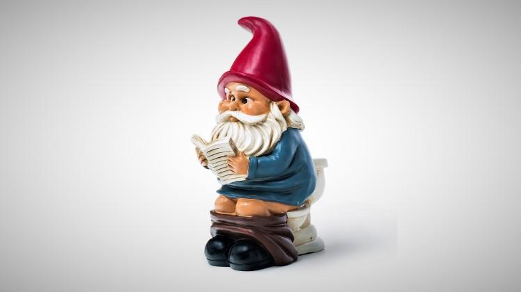 funny pooping garden gnome
